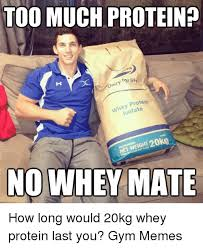 Protein Memes - too much proteinp for life dairy protein he late iso nowhey mate how