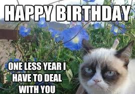 Cute Best Friend Memes - best 50 friend birthday memes