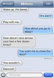 Text Meme - 7 funny conversations of if your cat could text meme collection