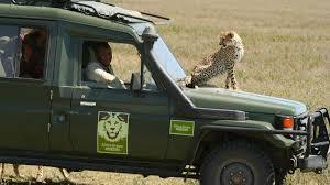safari land cruiser about our safari vehicles african dream safaris