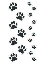 cat and kitten paws temporary tattooednow ltd