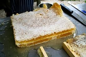 honeycomb edible how to harvest honey from comb milkwood permaculture