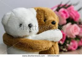 bear hug stock images royalty free images u0026 vectors shutterstock