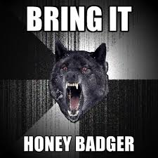 Honey Badger Memes - bring it honey badger create meme