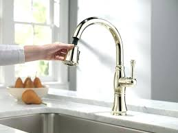 brushed nickel faucet with stainless steel sink mesmerizing polished nickel faucet and bridge faucet polished