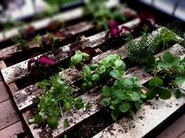 Small Garden Ideas Pinterest Collection Vegetable Garden Ideas Pinterest Pictures Patiofurn