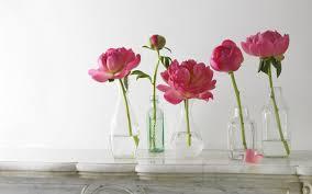 glass roses flower nature flowers glass roses garden wallpapers hd