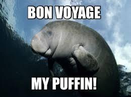 Puffin Meme - meme creator bon voyage my puffin meme generator at memecreator org