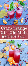 holiday cocktails png cran orange gin gin mule holiday cocktail recipe the produce moms