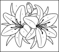 color number coloring pages adults lily printable color