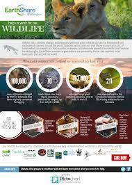 infographic wildlife protection earthshare washington