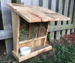 the wild rabbit feeder house rabbit free range and rabbit
