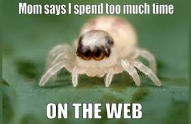 Cute Spider Memes - mom says i spend too much time on the web spider meme meme spider