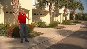 florida friendly landscaping success stories youtube