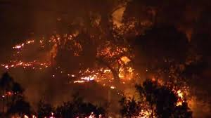Wildfire Social Media App by It U0027ll Go Up Like A Candle U0027 High Winds Could Fan Wildfires Nbc