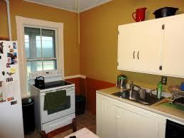 stylish kitchen color schemes