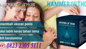 alamat toko jual obat hammer of thor asli di jakarta jual hammer