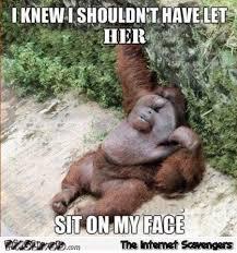 Sit On My Face Meme - i knew i shouldn t have let her sit on my face funny adult meme