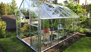 Small Backyard Greenhouse by Growing In A Small Scale Greenhouse Hobby Farms