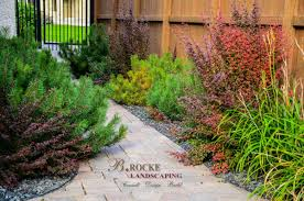 manitoba native plants naturalized landscapes b rocke landscaping