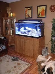 building a aquarium stand reef aquarium