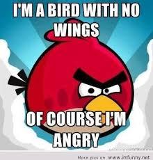 Angry Bird Meme - angry birds meme