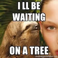 Funny Sloth Memes - 30 very hilarious sloth whisper meme stock golfian com