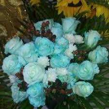 Wholesale Flowers Miami 3 D Flowers 56 Photos U0026 10 Reviews Florists 3555 Nw 74th Ave