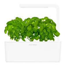 Easy Herbs To Grow Inside Smart Herb Garden Click U0026 Grow