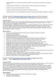 Sle Resume Business Development Director marketing business development manager description best market