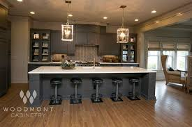 elegant kitchen cabinets by woodmont cabinetry style stockholm