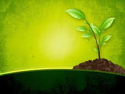 free beautiful nature green worship backgrounds for powerpoint
