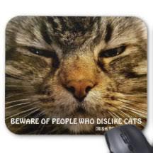 Meme Mouse Pad - cat meme mouse pads zazzle ca
