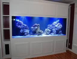 designer aquarium aquarium stand how to take care of goldfish