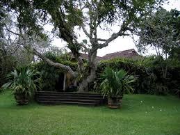 Home Garden Interior Design Captivating 80 Travertine Garden Interior Decorating Inspiration