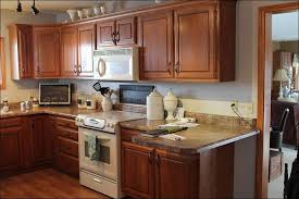 Cost To Paint Kitchen Cabinets Professionally by Kitchen Easy Kitchen Updates Kitchen Cabinet Refacing Cabinet