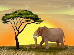 illustration of a elephant standing under a tree royalty free