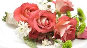 bulk flowers online floral trends diy wedding ideas flower tips whole blossoms