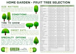 Fruit Garden Layout Green In Real Ideas For The Home Garden Fruit Tree Selection