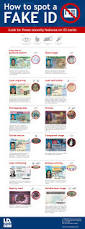 how to spot a fake i d infographic drivers license guide