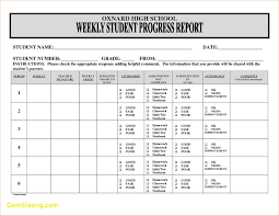 student daily report template amazing preschool progress report template ideas resume ideas