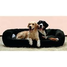 canap pour chien grande taille canape pour chien pas cher coussin pour canape pas cher luena les