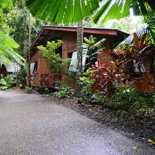 The Beach House Cape Tribulation by Cape Tribulation Tour And Stay One Stop Adventures