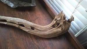 driftwood cedar limb rustic primitive art home decor 552