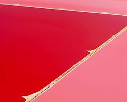 pretty pink lakes across the globe 54 pics