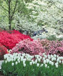 Botanical Gardens Dallas by Travel In Bloom Texas Gardens Worth Hitting The Road For
