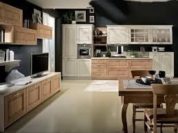 Kitchen Door Designs Kitchen Decorating Italian Glass Cabinets Modern Kitchen Design