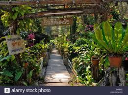 Restaurants Near Botanical Gardens Bridge Into The Garden Restaurant Near A Waterfall Mae