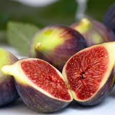 figs delivery buy fig brown turkey ficus carica brown turkey delivery by