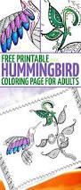 hummingbird coloring free printable coloring adults